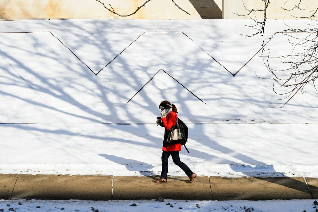 Photo: Person walking past snow-covered flowerbed