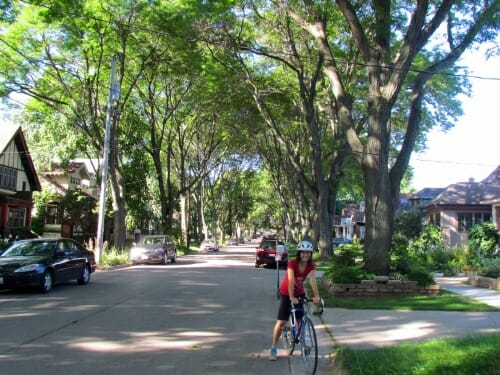 A woman pauses on her bike on a tree lined street.