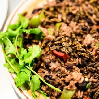 A dish of rice, beans and adobe-flavored Chapulines (grasshoppers) is served.