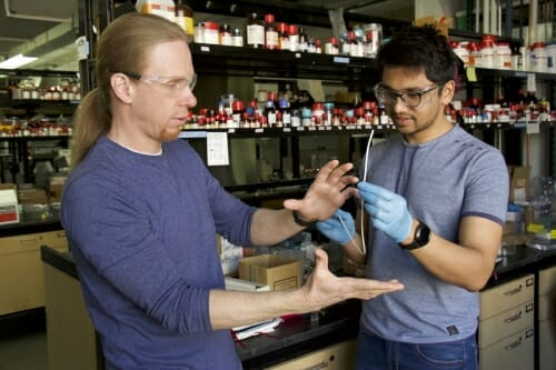Photo: David Lynn and Harshit Agarwal looking at catheter