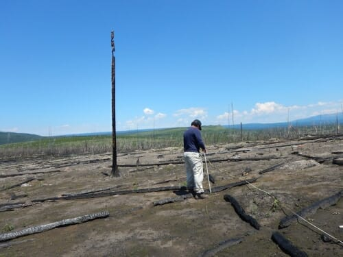 Photo: A man measures something in a landscape in Yellowstone National Park.