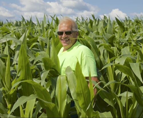 Photo: Jack standing in cornfield