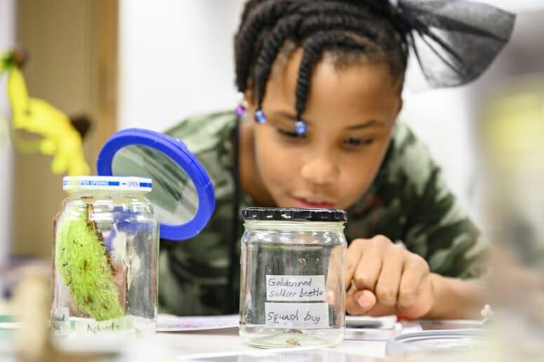 Photo: A boy looks at a beetle inside a glass jar.