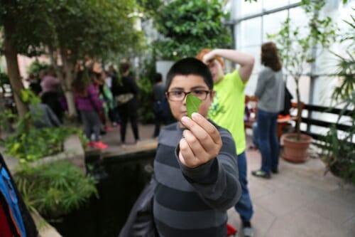 Photo: Child holding leaf