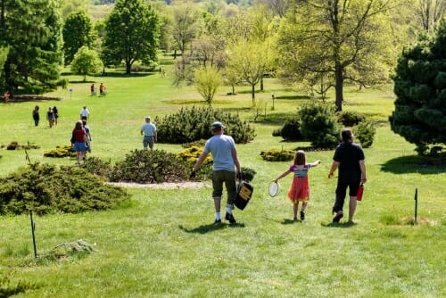 Photo: A sunny, tree filled garden, with visitors strolling on it.