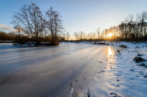 Photo: The sun is reflected off the ice surface of a pond in winter.