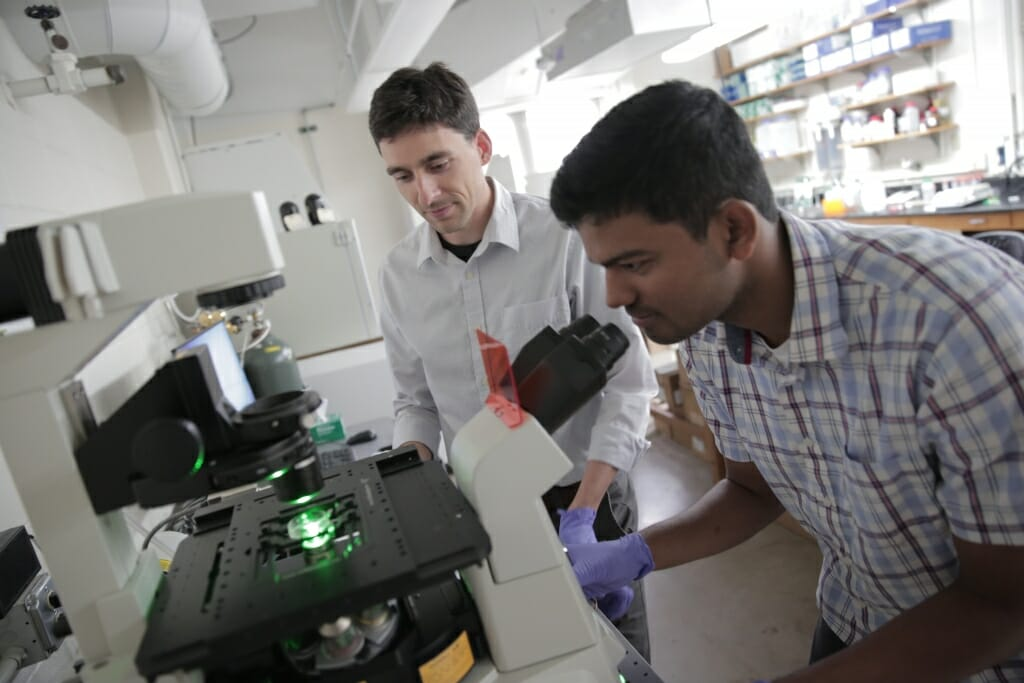 Photo: Two researchers wearing white coats work in a lab.