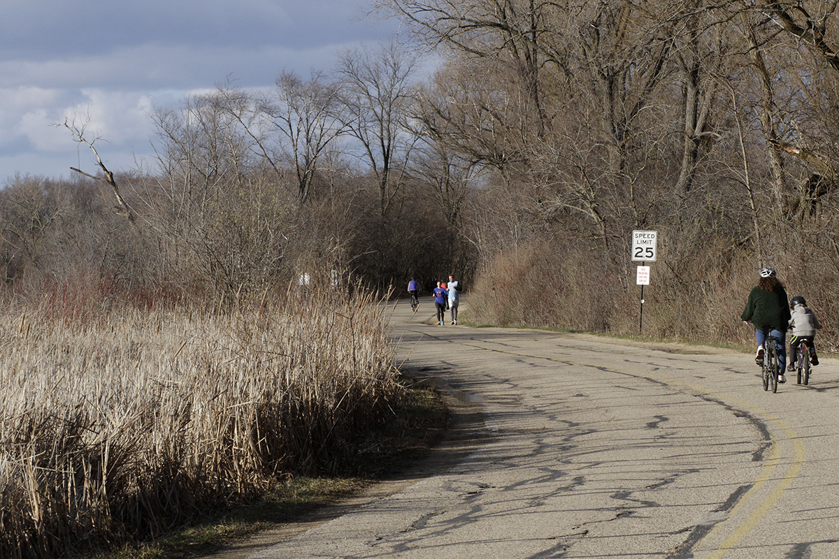 Photo of joggers, cyclists and pedestrians using a stretch of Arboretum Drive along Lake Wingra.