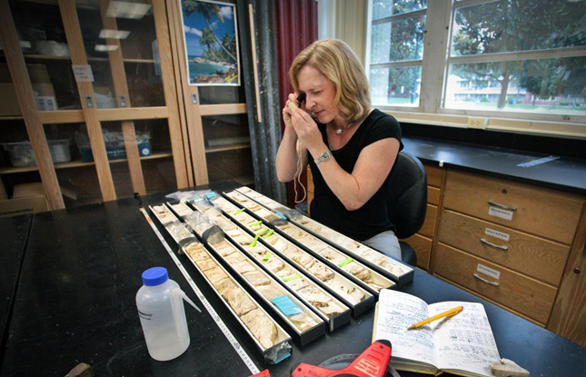 Dutton examines rock samples at the University of Florida.