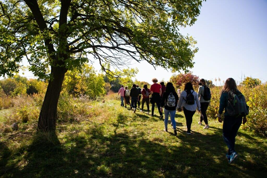 Group walking along trail past tree