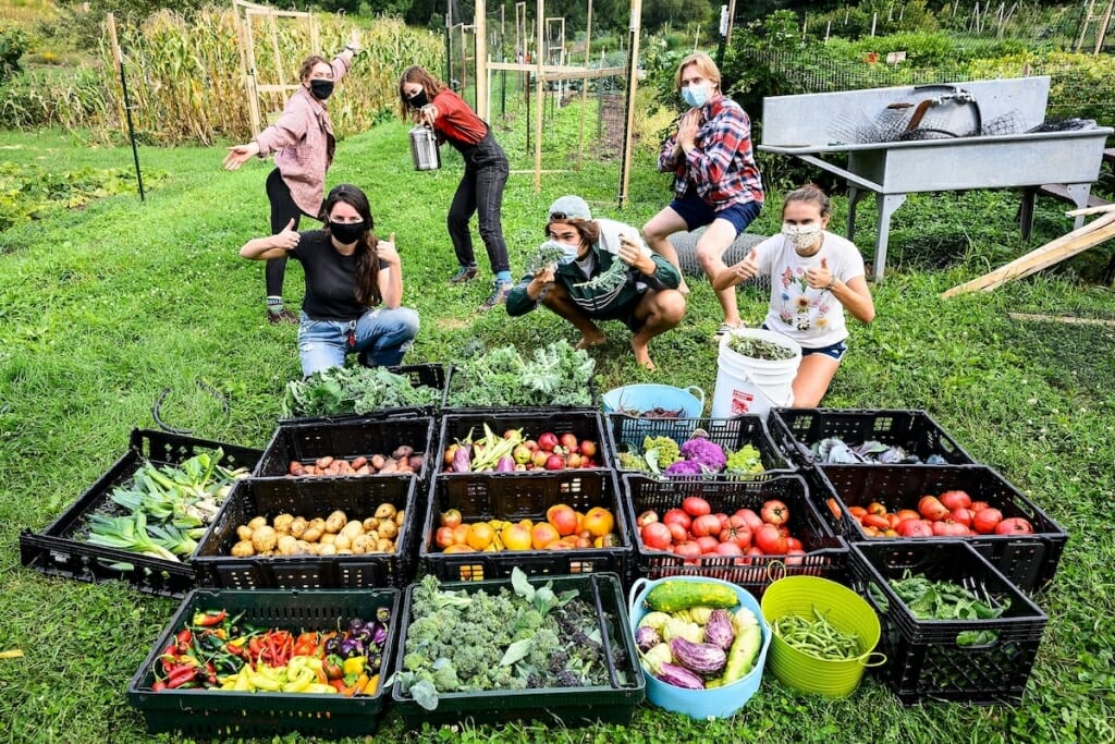 Students posing behind bins of produce