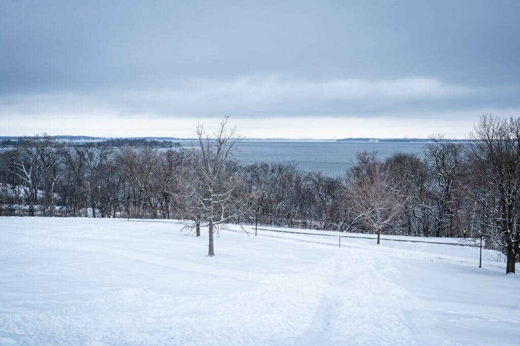 Snowy hill, bare tree, looking toward lake under cloudy sky