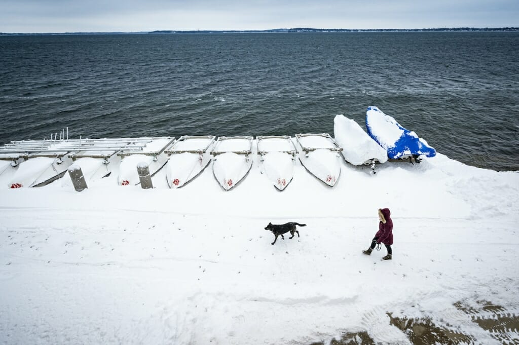 Person walking a dog past boats covered with snow
