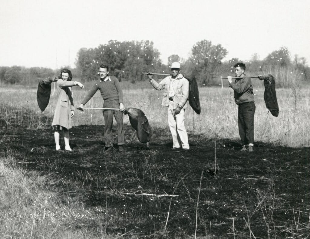 Aldo Leopold with a group in the Arboretum, performing a controlled prairie burn, ca. 1940–45.