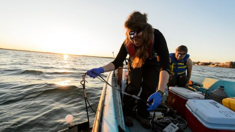 Students collect data and water samples from Lake Mendota during an early morning outing in 2016 for a limnology experiment. Limnology researchers on such an discovered the spiny water flea in Lake Mendota in 2009.