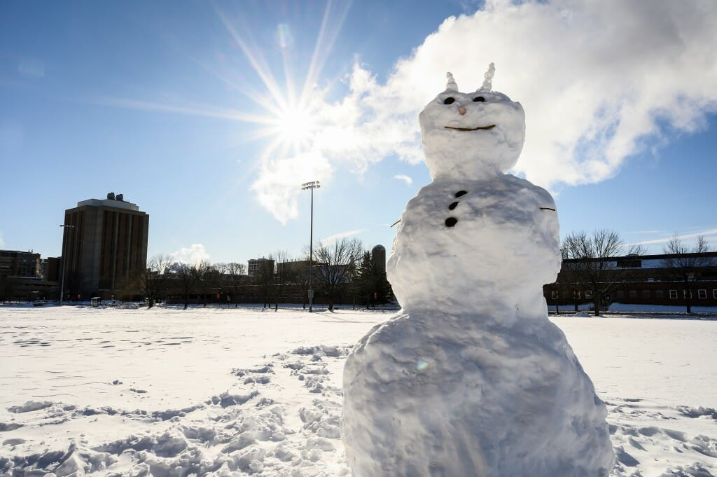 This horned snowman doesn't appear to fear the sun's warmth.