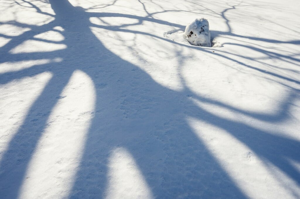 Life for a snowman can be fleeting, especially when the temperature soars to 40.