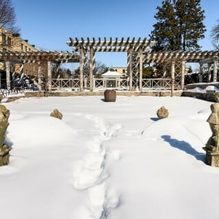 Allen Centennial Garden: Statues dot the snow-covered French Garden.