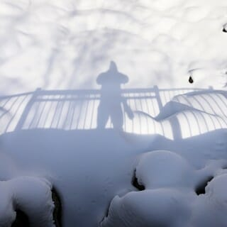 Botany Garden: The photographer's shadow is cast upon a blanket of snow covering the empty form of a small pond.
