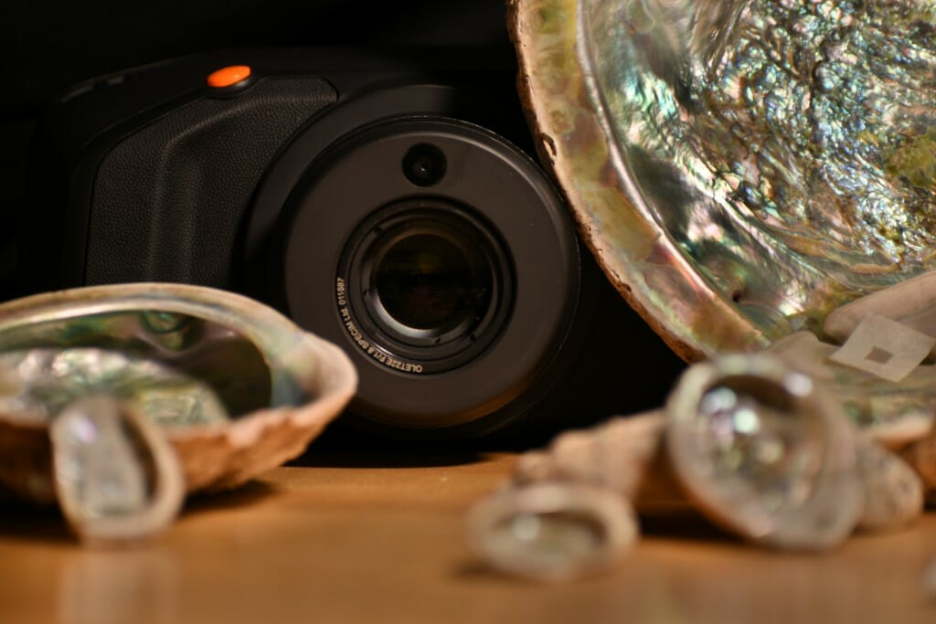 Pieces of mother-of-pearl sitting on a table next to a camera