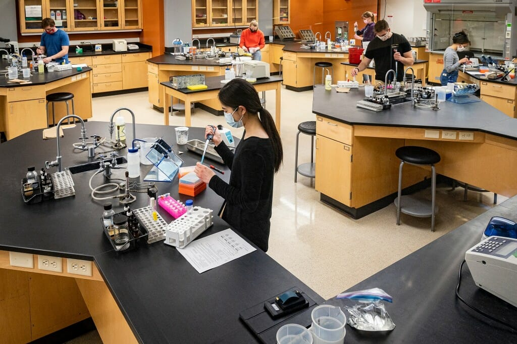 Students conduct experiments in Microbiology 304: Biology of Microorganisms, an in-person class and lab session taught by Jon Roll, faculty associate in the Department of Bacteriology, at the Microbial Sciences Building on April 22.