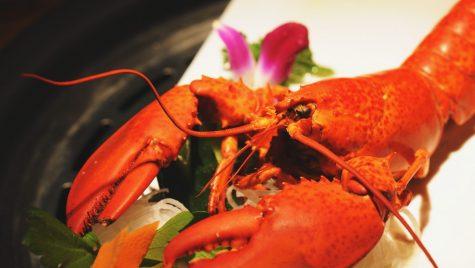 Closeup of a lobster
