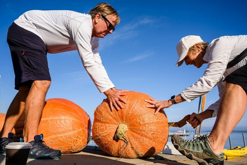 2 people touching a large pumpkin