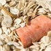 Photo: Mealworms feeding on a diet of oats and a carrot