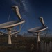 Artist's impression of the full Square Kilometer Array at night