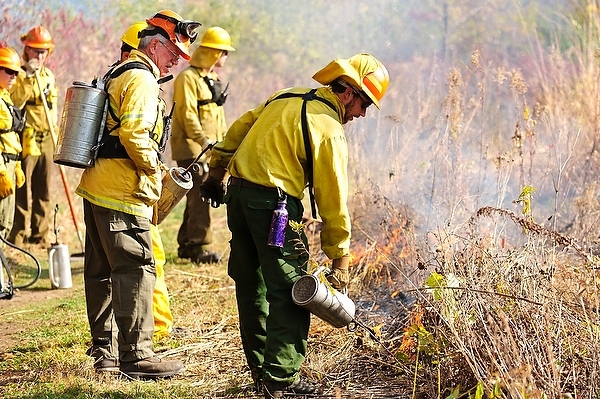 Photo: Workers performing controlled burn