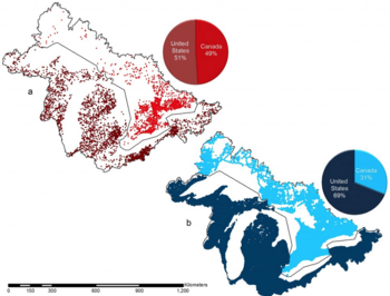 Graphic: Map of dams and road crossings in Great Lakes basin