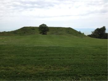 Photo: Monk's Mound