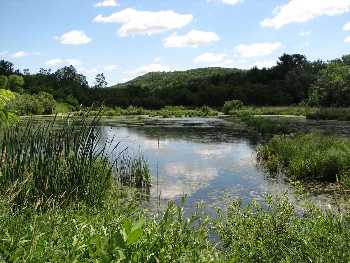 Photo: Pond in Kickapoo Valley Reserve