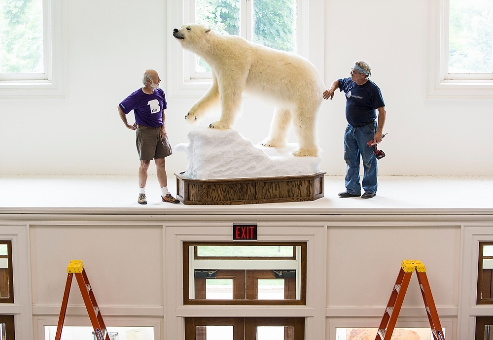 Photo: Workers with stuffed polar bear