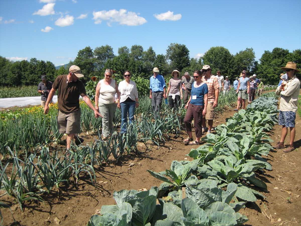 Photos: Students observing vegetable varieties