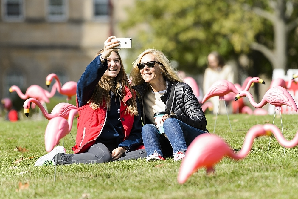 Photo: Two women taking a selfie in front of flamingos