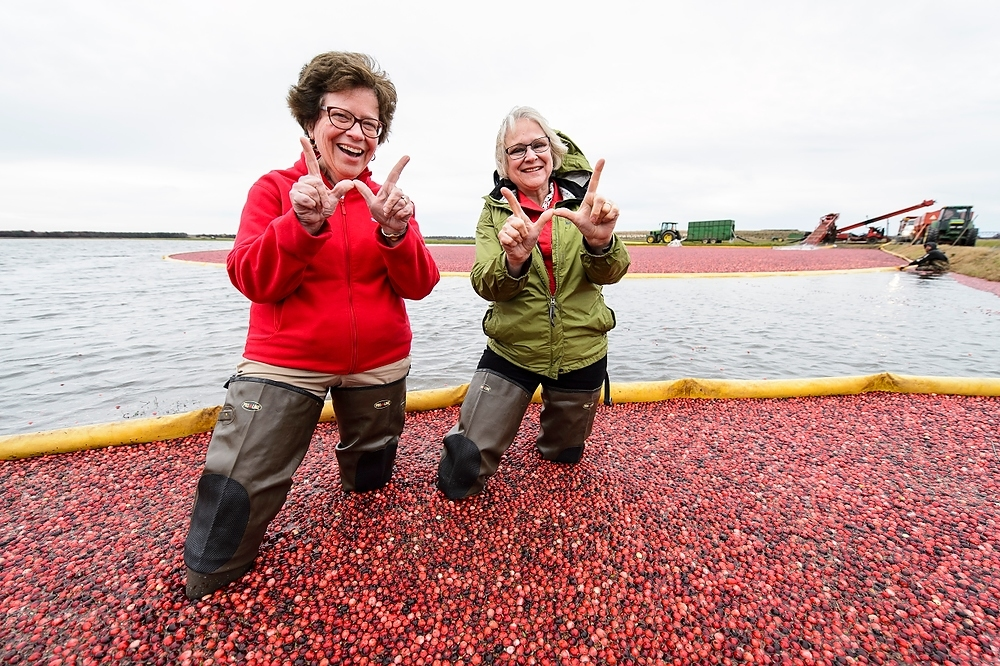 Photo: Rebecca Blank and Kate VandenBosch standing in cranberries