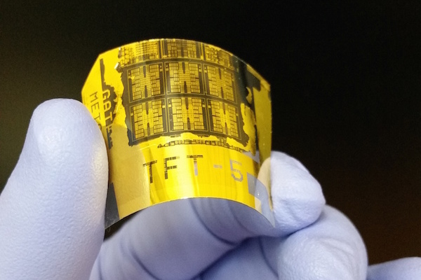 Photo: Flexible phototransistor