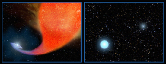Illustration: Birth of a blue straggler star