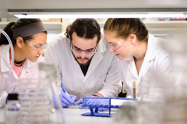 Photo: Students preparing bacteria culture in lab