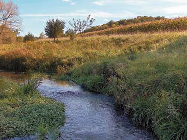 [photo] Elvers Creek