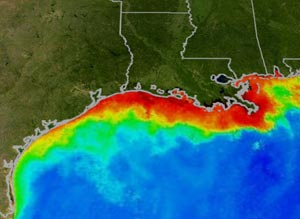 NOAA image showing Gulf of Mexico dead zone