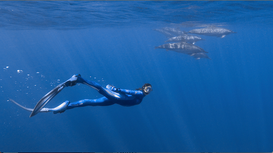 Photo: Céline Cousteau diving with dolphins
