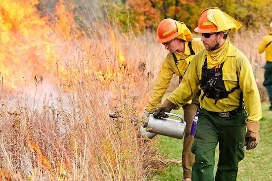 Photo: workers conducting prescribed burn of Biocore Prairie