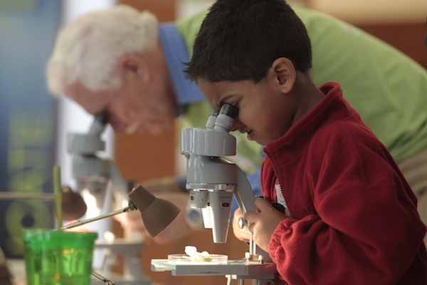 Photo: elderly and young people looking into microscopes
