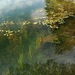 Photo: Eurasian water milfoil