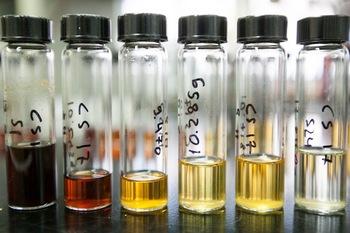 Photo: biomass fractions in vials