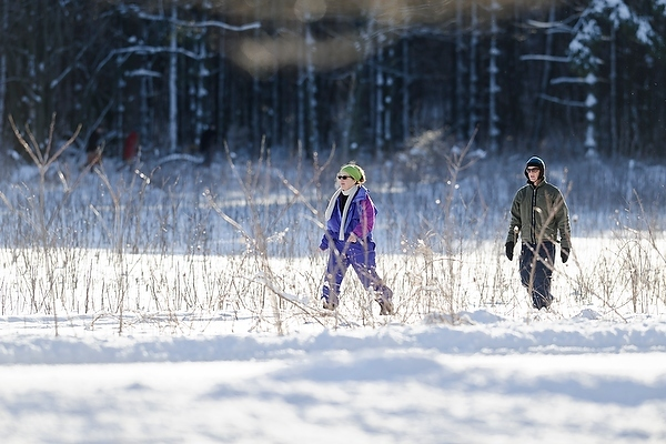Photo: people snowshoeing through Arboretum