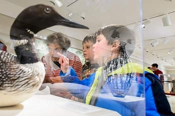 Photo: children looking at bird exhibit