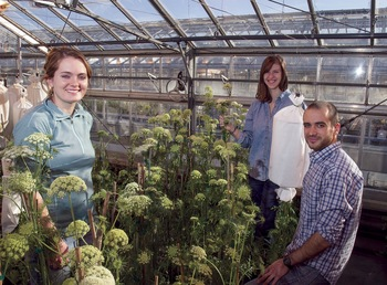 Photo: students in greenhouse